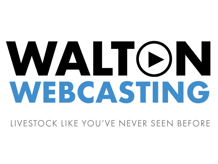 Home walton webcasting livestock like youve never seen before junglespirit Gallery