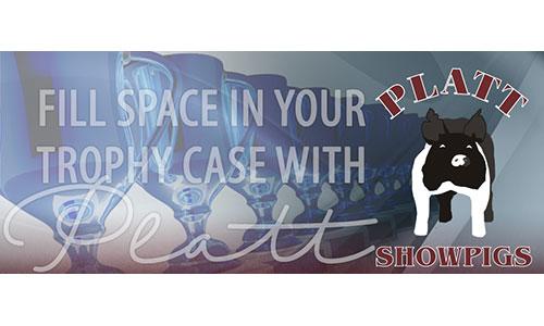 Logo image for Platt Showpigs