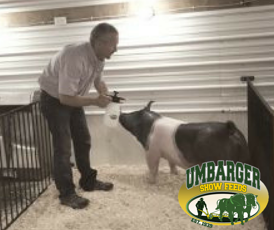 Stock Center - Walton Webcasting - Livestock like you've