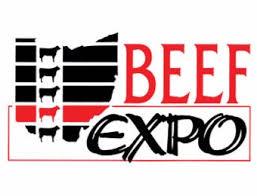 Home walton webcasting livestock like youve never seen before 2018 ohio beef expo heifer show ring 1 junglespirit Choice Image